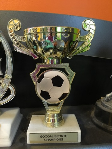 One of my son's plastic soccer trophies, a gold plastic cup with a soccer ball on a stone base.